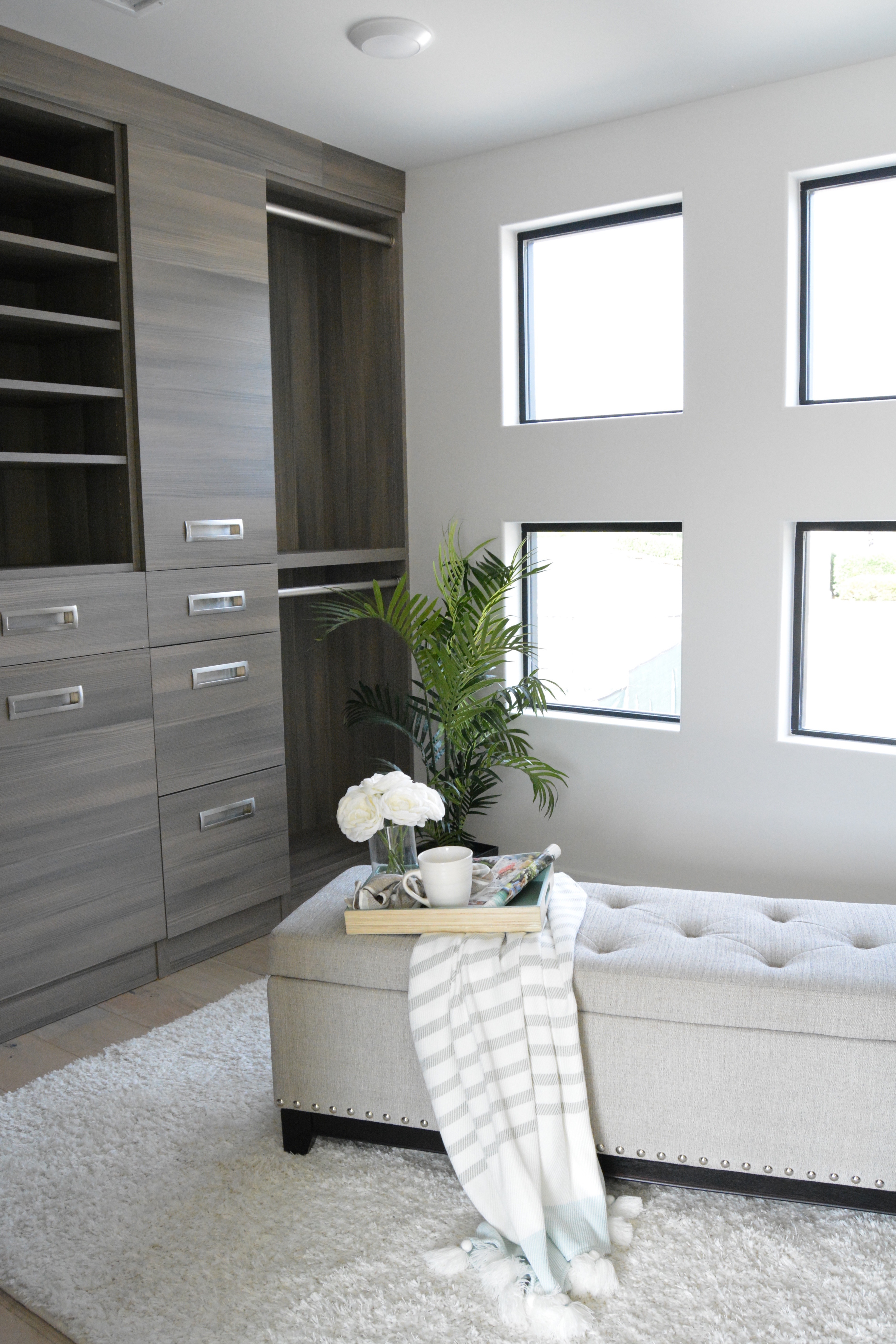 Modern walk in closet windows built in cabinetry